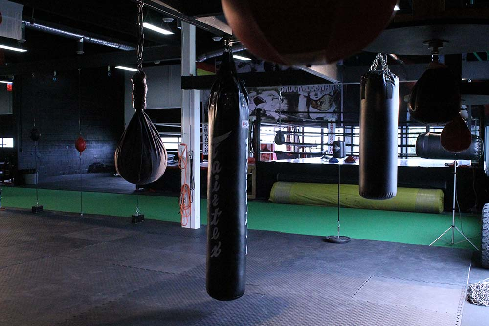 BOXING DIVISION